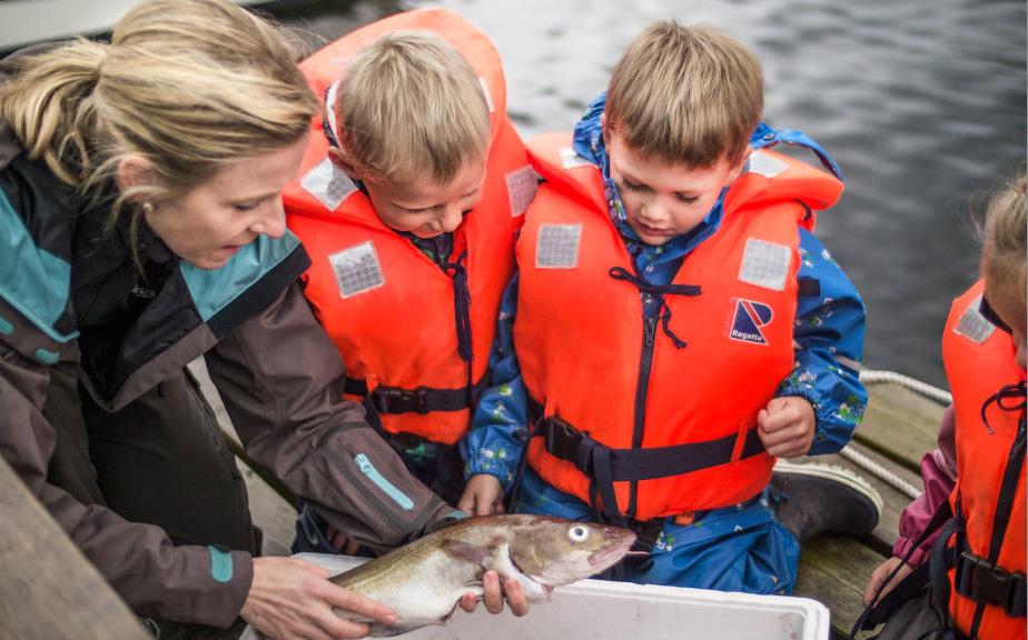 children inspecting fish